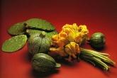 Cactus, pumpkins and pumpkin seeds